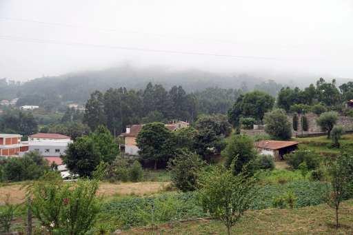 Camino Português DSC01430