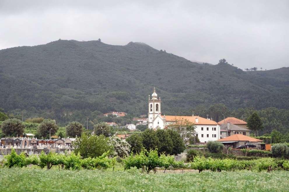 Camino Português DSC01479