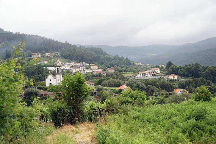 Camino Português DSC01590