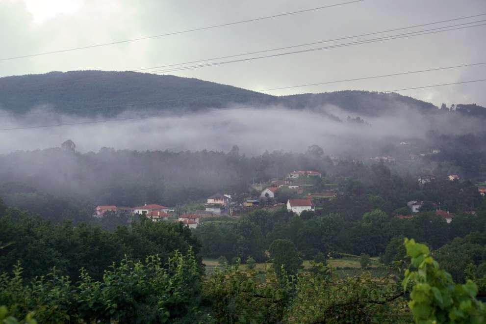 Camino Português DSC01621