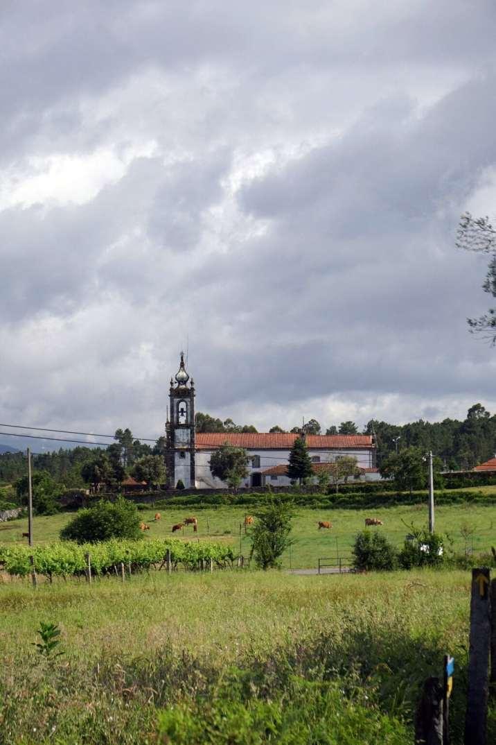 Camino Português DSC01658
