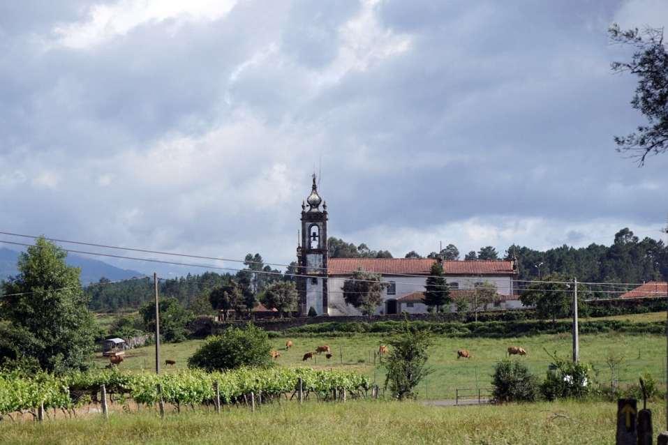Camino Português DSC01660