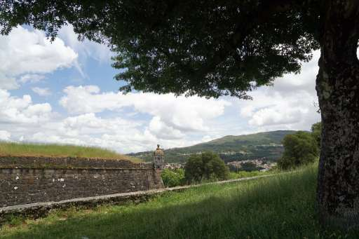 Camino Português DSC01684