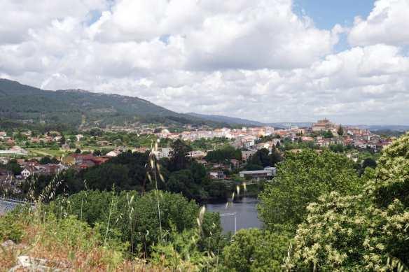 Camino Português DSC01690