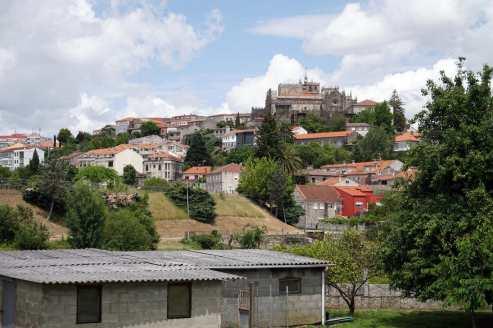 Camino Português DSC01707