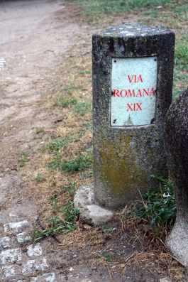 Camino Português DSC01741
