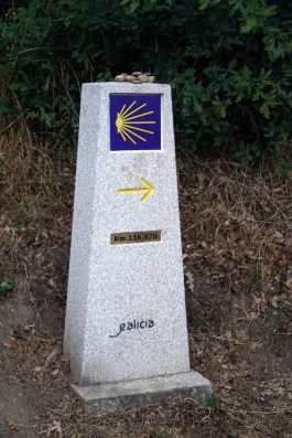 Camino Português DSC01742