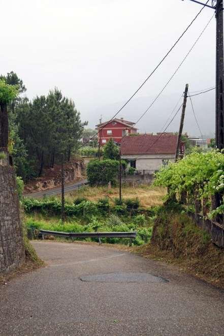 Camino Português DSC01760