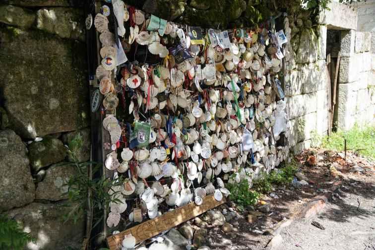 Camino Português DSC01822