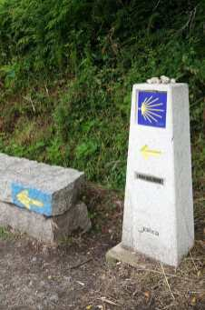 Camino Português DSC01922