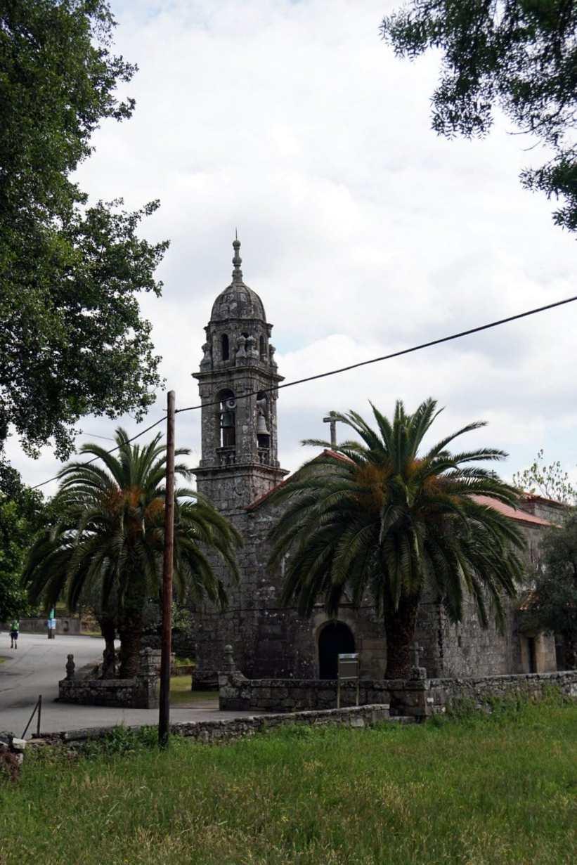 Camino Português DSC02015