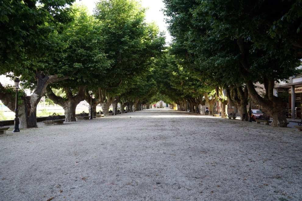 Camino Português DSC02047