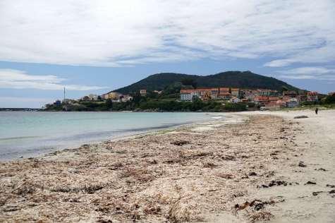 Camino Português DSC02184