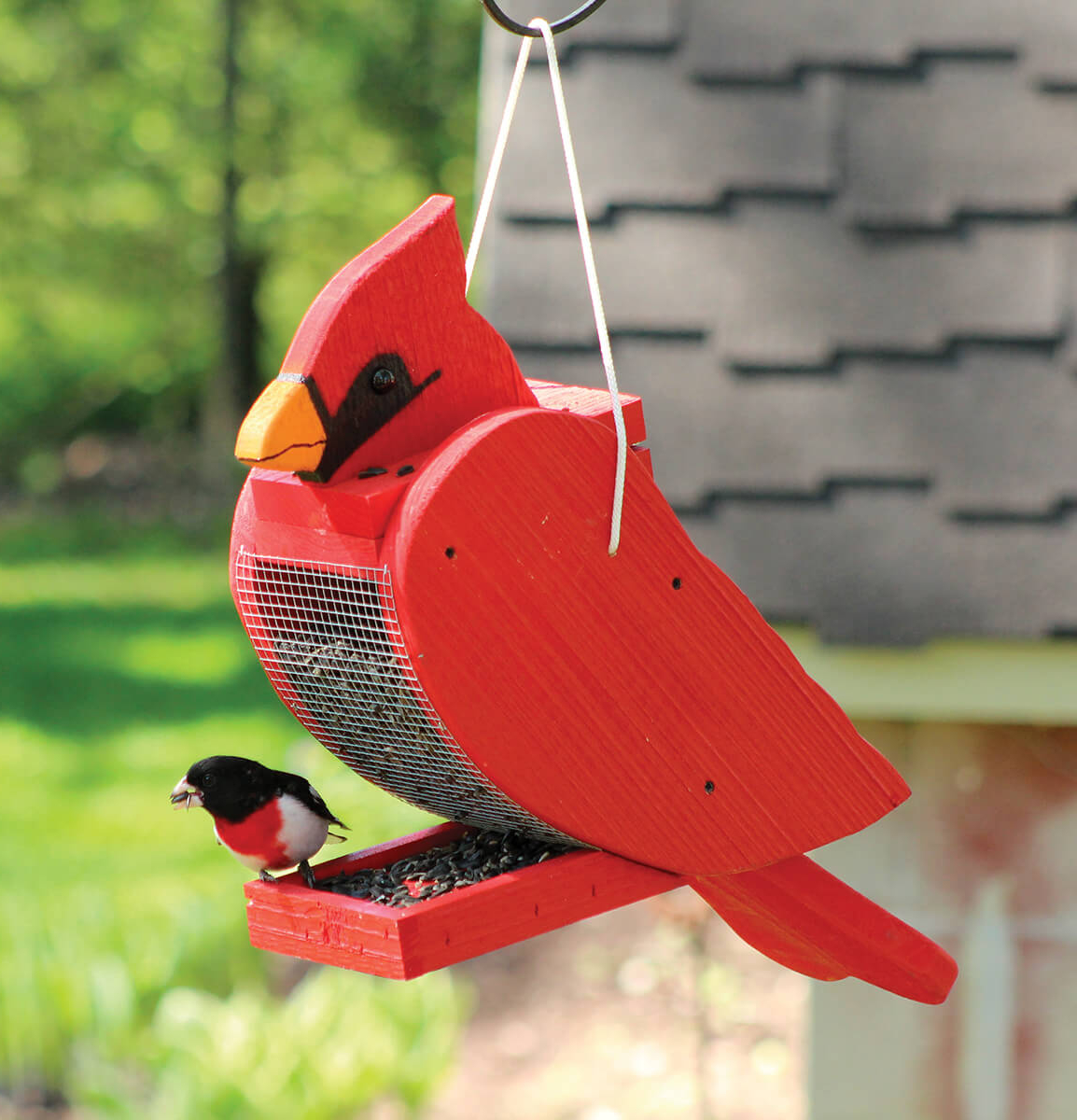 Amish Hand Made Bird Shaped Feeder Collection Set Of 6