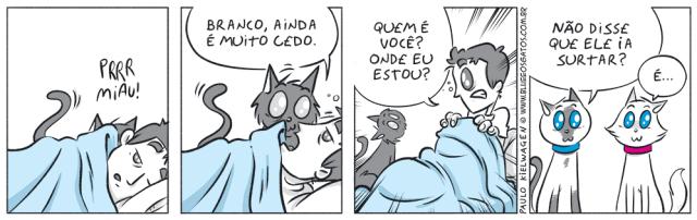 Tira em quadrinhos do Blue. Paulo acorda com um gato chamando e leva um susto quando um gato estranho está em sua cama. Blue e Branco só observam ele surtar.