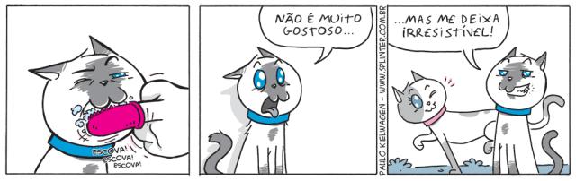 Tira em quadrinhos do Blue no pet shop / veterinário. Blue não gosta muito da escovação, mas diz ser irresistível às gatinhas.