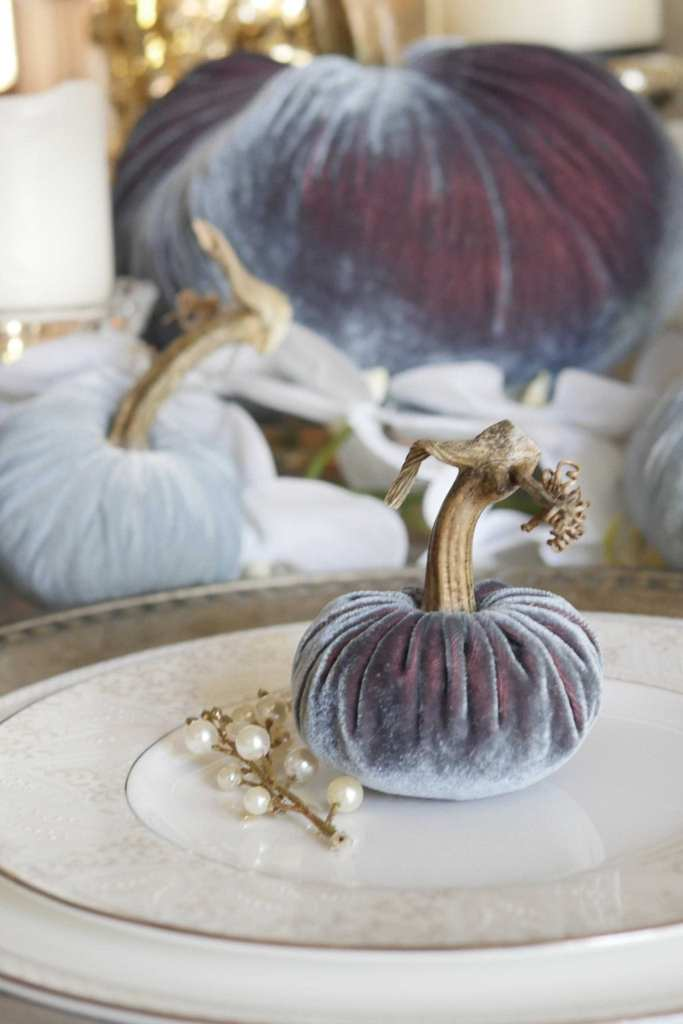 hotsquash like collection of new velvet pumpkins with real stems.