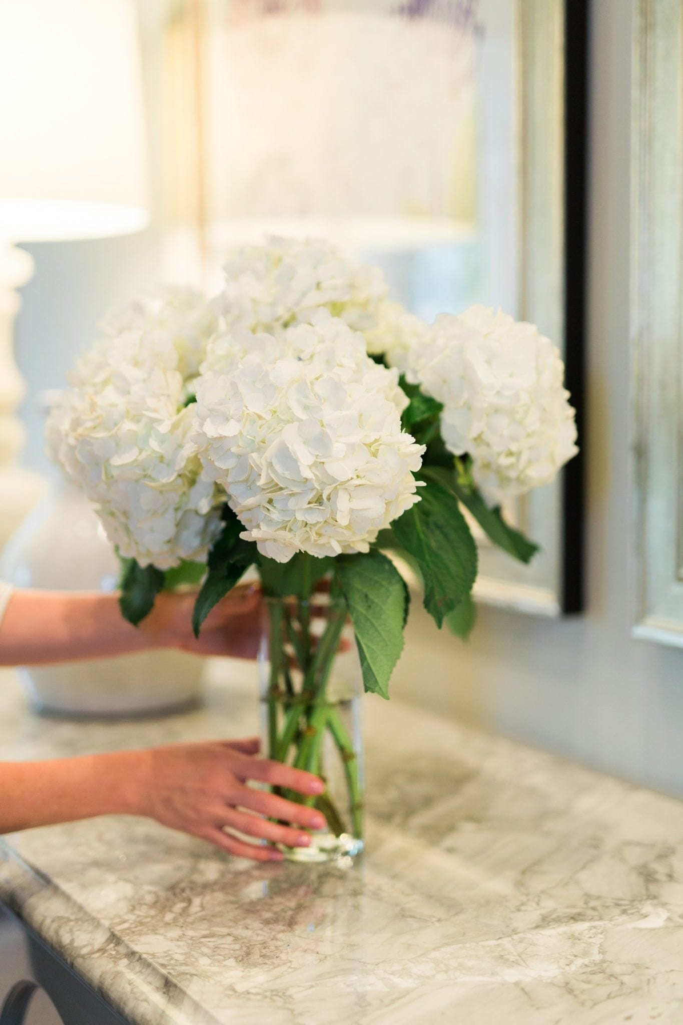 How to keep flower arrangements alive longer. White hydrangea flower in a clear vase.