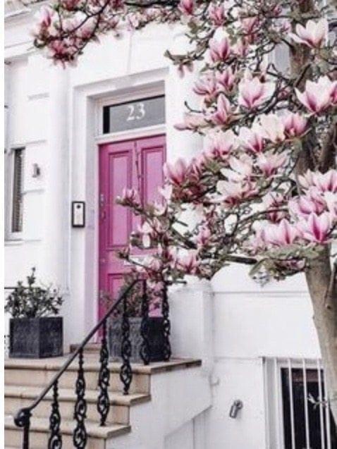 Pink front door in London