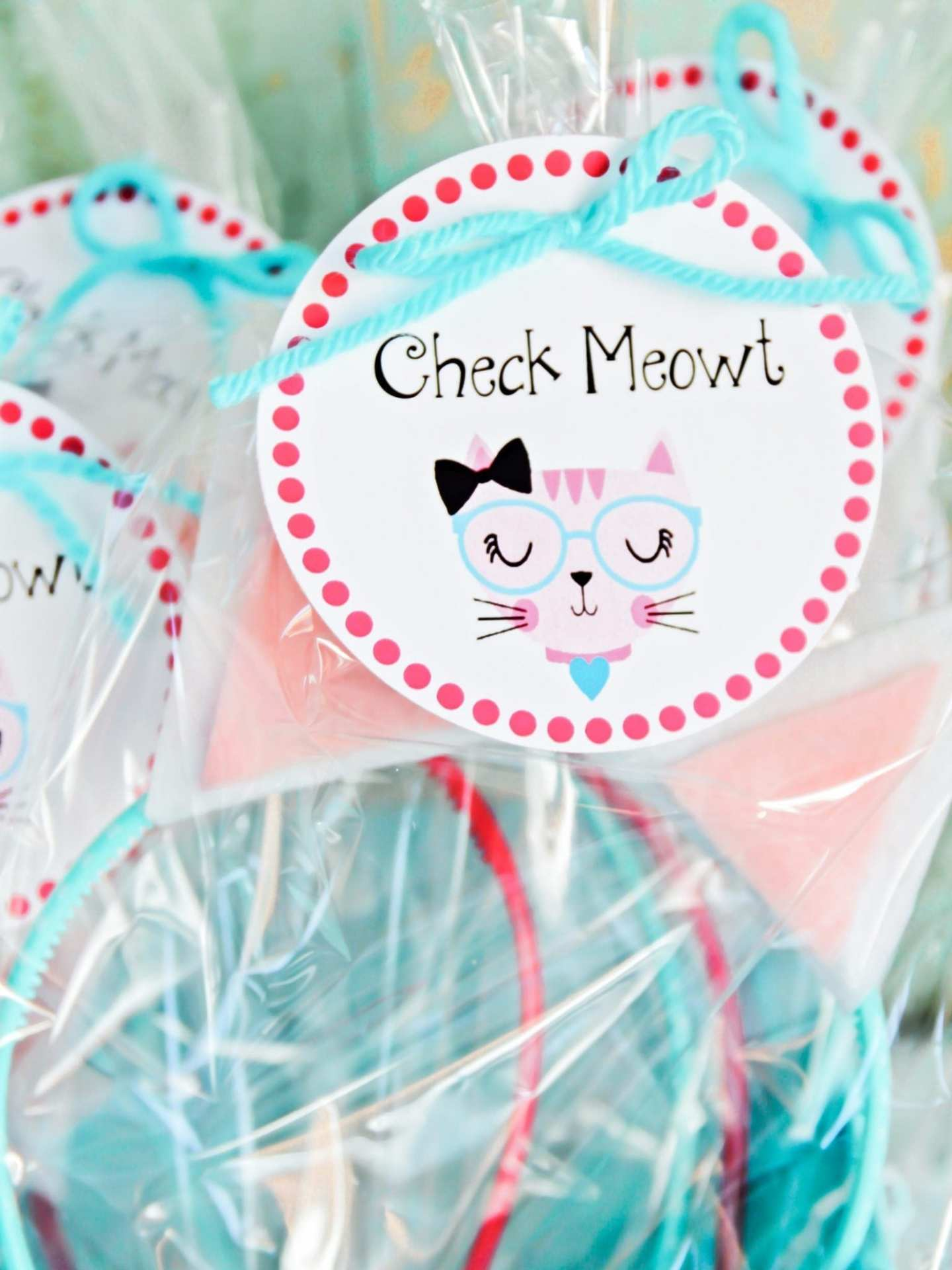 How to decorate a kitty themed party and what kind of crafts to do with the kids.