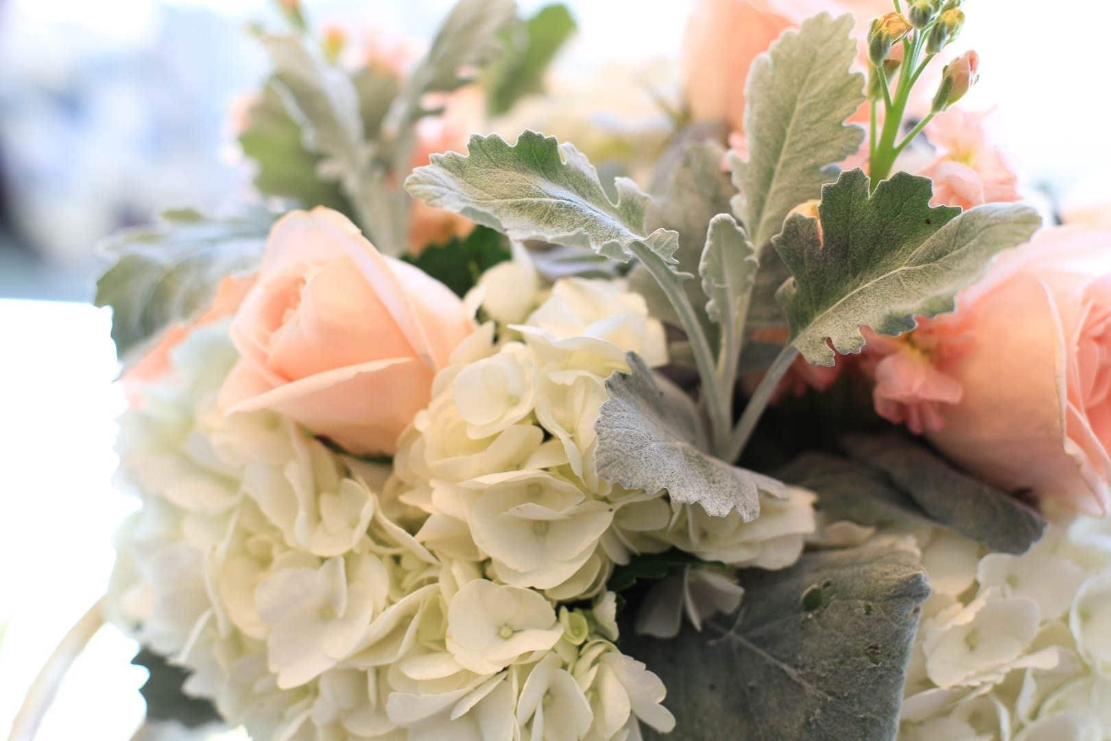 Peach Roses mixed with white hydrangea and dusty miller. Soft floral bouquet.