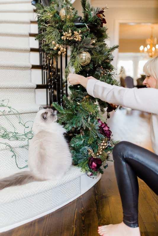 Entryway Christmas Decor with Christmas blogger BlueGrayGal. Ragdoll cat.
