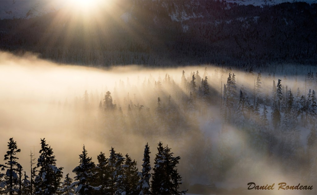 Sun Down, Fog Up by Daniel Rondeau