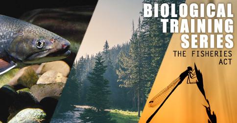 Biological Training Series-Summer 2021