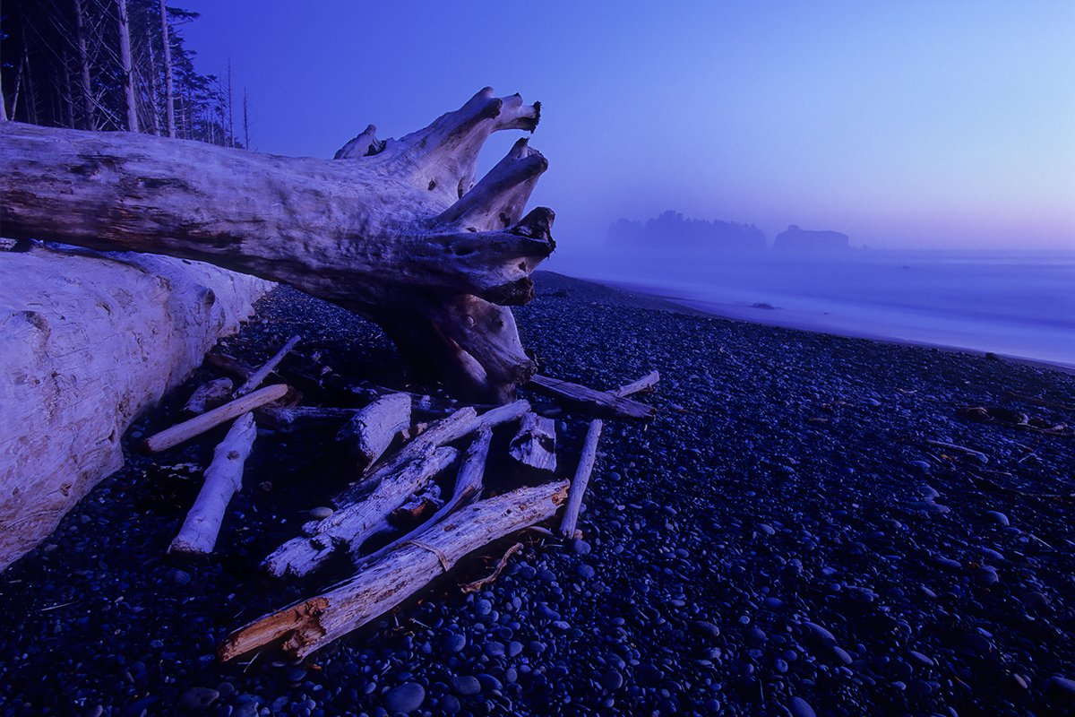Blue Hour, Rialto Beach, Olympic National Park, Washington