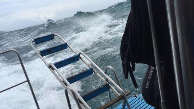 Monsoon Thailand