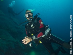 PADI WRECK DIVER