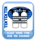 OUR TDI COURSES