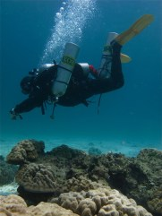 Technical-diving-courses-instructor-level-thailand (73)