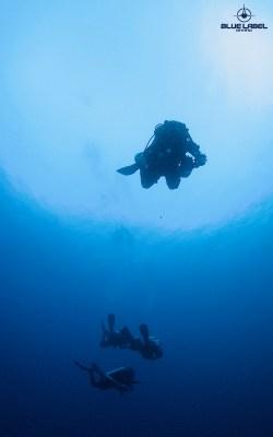 blue water descend