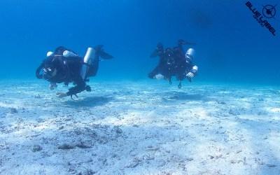 ccr rebreather optionsIMG_9385