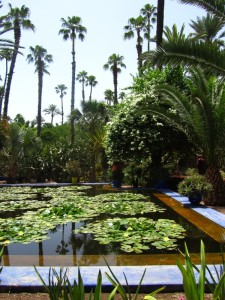 The Majorelle Garden Pond