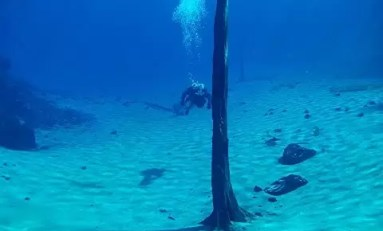 Zanurz się w wodach Clear Lake, w jeziorze o wyjątkowej przejrzystości