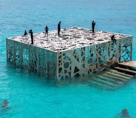 Coralarium - interfejs do cudów podwodnego świata