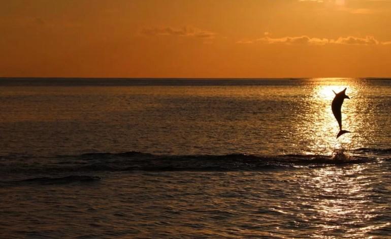 Złap-słońce--Ocean-Indyjski--Malediwy.Sumit-Adhikary