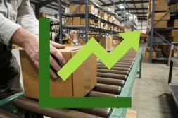 Wholesale Distribution Trends