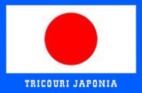 steag japonia