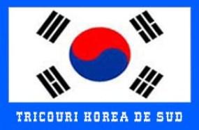 steag korea de sud