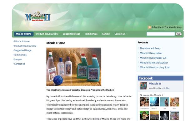 Customized Wordpress Theme with eCommerce
