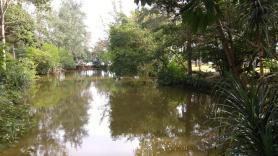 Nationalpark (2)