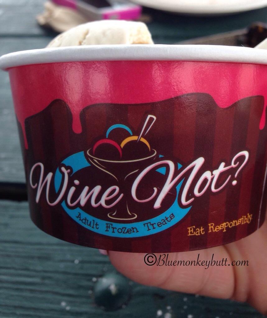Canal Days Wine Not Ice Cream