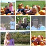 Throwback Thursday Apple Picking