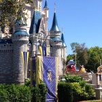 Magic Kingdom Wordless Wednesday