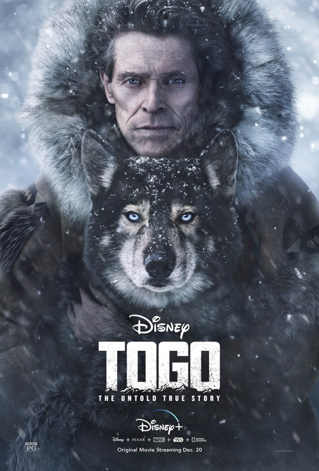 5 way to celebrate national puppy day. Photo is movie poster for Togo. Contains a dog and a man and snow