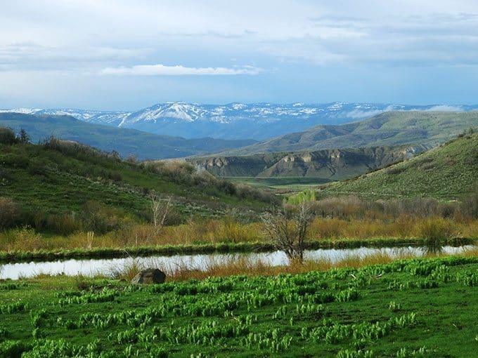Colorado Living |Blue Mountain Belle
