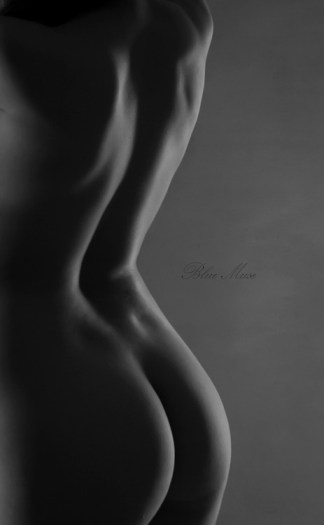 Blue Muse Fine Art with Missy Ly. Bodyscape. 2013.